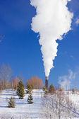 Plant pipe smoking — Stock Photo