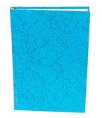 Libro azul permanente aislada — Foto de Stock