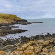 Northern Ireland coastline — 图库照片