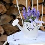 Lavender decoration — Stock Photo #45121189