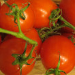 Постер, плакат: Tomatoes on the vine