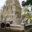 Stock Photo: Buddhist temple and flower view. Thailand, Chiangmai.