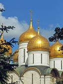 Russia, Moscow, the Assumption Cathedral of the Moscow Kremlin — Stock Photo