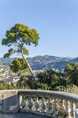 Francia, cote d ' azur. aparcar en bonito, en el castillo de la colina — Foto de Stock