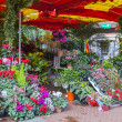 Stock Photo: Flower shop on street