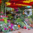 Flower shop on the street — Stock Photo