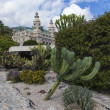 The Principality of Monaco. Monte Carlo casino and a public garden — Stock Photo #35064455