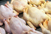 Eco-friendly products on the market stall. chicken carcasses — Stock Photo