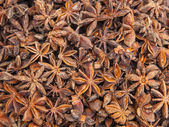 France, Provence. Different anise on the counter of the city market on the Cote d'Azur. — Stock Photo