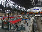 Hamburg, Germany , February 19, 2013. View of the main railway station platforms — Stock Photo