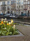 Amsterdam, holanda. típico paisaje urbano en un día soleado primaveral — Foto de Stock