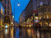 Vienna , Austria. Tourists walk on the evening streets in rainy weather — Stockfoto