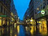 Vienna , Austria. Tourists walk on the evening streets in rainy weather — Stock Photo