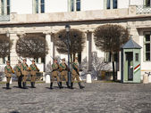 Budapest, Hungary, on March 20, 2014. Changing of the guard at the royal palace — Foto de Stock