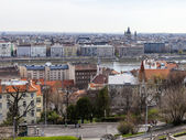 Budapest, hongarije, op 24 maart 2014. uitzicht op donau en pesht van kasteel buda — Stockfoto