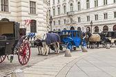 Vienna, Austria. The Vienna fiacres waiting for tourists at Hofburg — Stock Photo