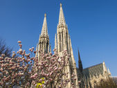 Vienna, Austria, on March 24, 2014. Votivkirche, architectural details — ストック写真