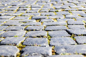 Old cobbles — Stock Photo