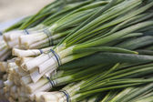 Bunches of fresh green onions on market stall — Stock Photo