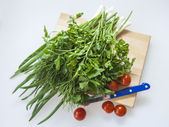 Cherry tomatoes and greens for salad — Stock Photo