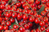 Cherry tomatoes on a market counter — Stock Photo
