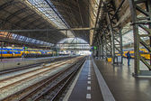 Amsterdam, Netherlands, on July 12, 2014. Platforms of the railway station — Stock Photo