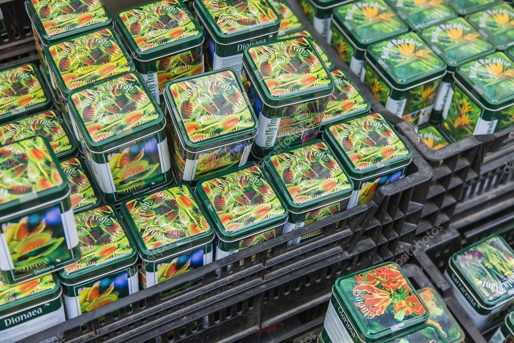 Amsterdam pays bas le 8 juillet 2014 vente de plantes for Site de vente de plantes