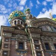 St. Petersburg, Russia, on July 22, 2012. Domes of the cathedral Church of the Savior on Blood — Stock Photo #51271651