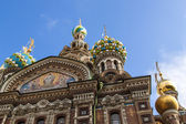 St. Petersburg, Russia, on July 22, 2012. Domes of the cathedral Church of the Savior on Blood — Stock Photo
