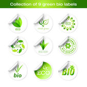 Collection of green stickers — Stock Vector