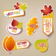 Autumn Sale Stickers — Stock Vector