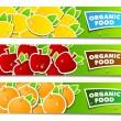 Stock Vector: Fruit organic banner