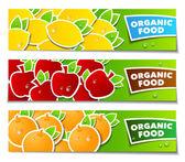Fruit organic banner — Stock Vector