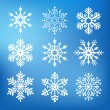 Nine cute snowflakes — Stock vektor