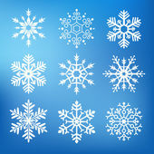 Nine cute snowflakes — Stock Vector
