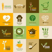 Collection of vegetarian and organic icons — Stock Vector