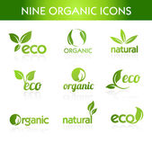 Green Organic Icons — Stock Vector
