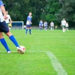 Stock Photo: Soccer player kicks the ball. Horizontal image of soccer ball wi