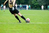 サッカー選手はボールを蹴る。水平方向の画像サッカーのボールの wi — ストック写真