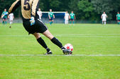 Soccer player kicks the ball. Horizontal image of soccer ball wi — 图库照片