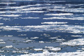 Kışın donmuş nehir — Stok fotoğraf