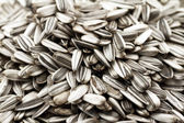 Sunflower seeds — 图库照片