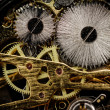 Watch gears very close up — Stock Photo