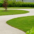 Winding path through — Stock Photo #30174021