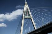 Détail du pont (Hongrie) — Photo
