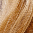 Stock Photo: Blond hair
