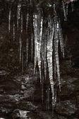 Eiszapfen auf dunklem hintergrund — Stockfoto