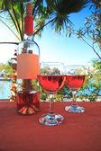 Dos copas de vino — Foto de Stock