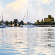 White yachts on anchor in harbor — Stock Photo #34525825