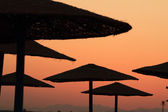 Beach parasols - Egypt — Stockfoto